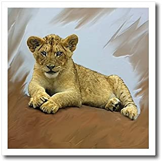 3dRose ht_4058_1 Lion Cub Iron on Heat Transfer for White Material, 8 by 8-Inch
