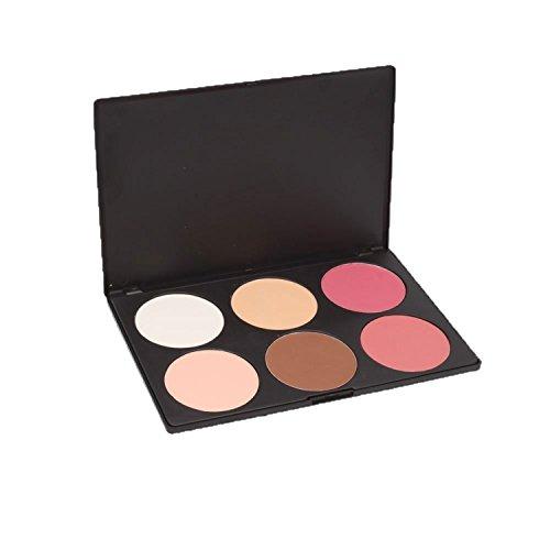 Pure Vie® 6 Couleurs Palette de Maquillage Poudre pour le Visage Correcteur Camouflage Cosmétique Set #2 - Convient Parfaitement pour une Utilisation Professionnelle ou à la Maison
