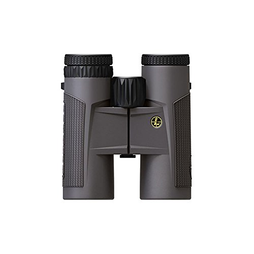 Leupold Bx-2 Tioga HD Roof Binoculars, Shadow Grey, 8 x 42mm