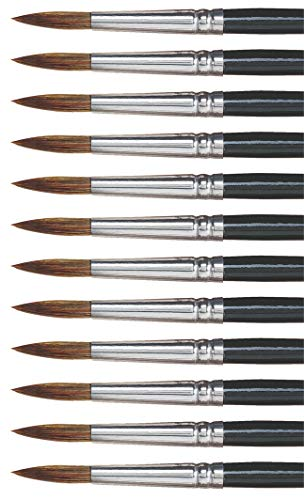 Dynasty 27878 Round Camel Hair Short Enameled Wood Handle Watercolor Paint Brush, Size 10, 1-1/16' Hair, 0.5' Height, 2.5' Width, 8.5' Length, Black (Pack of 12)