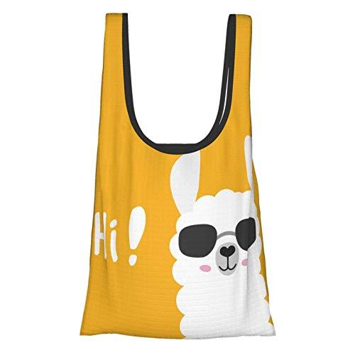 Hi Alpaka wiederverwendbare und waschbare Einkaufstasche, 22,7 kg, faltbar,...