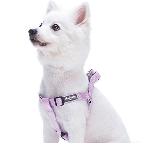 Blueberry Pet Essentials 21 Colors Step-in Classic Dog Harness, Chest Girth 20' - 26', Lavender, Medium, Adjustable Harnesses for Dogs