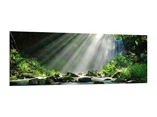 Glasbilder Wandbilder 125 x 50cm Lichtung im Wald AG312502443 / Deco Glass, Design & Handmade/Eyecatcher, Kunstdruck!