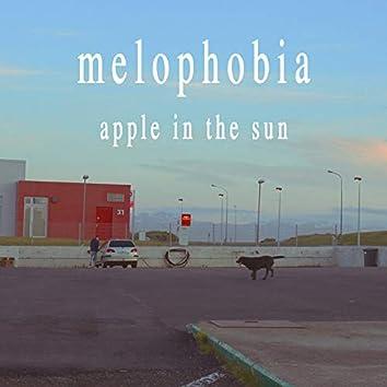 Apple in the Sun