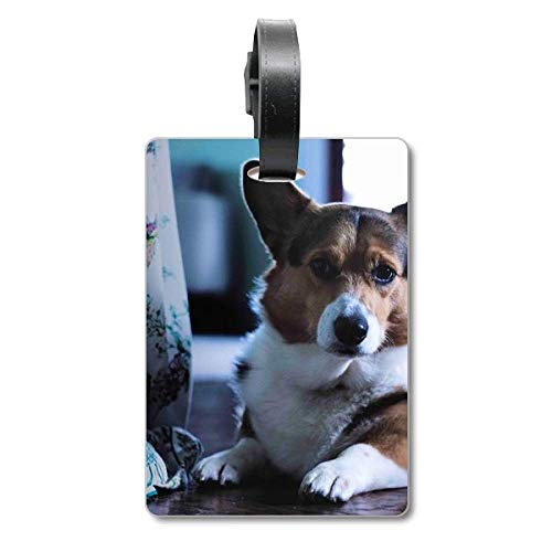 Corgi Dog Pet Animal Lonely Picture Cruise Suitcase Bag Tag Tourister Identification Label
