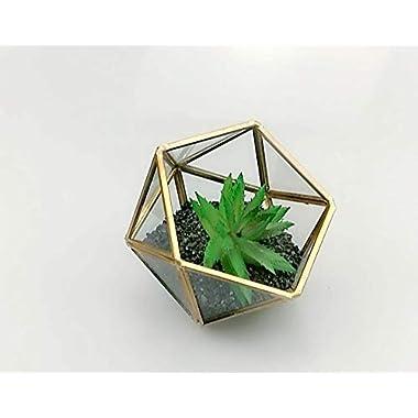 Bella's garden Geometric Copper Terrarium Container Desktop Planter for Succulent Fern Moss Air Plants Holder Miniature Outdoor Fairy Garden Gift Wedding Decor Box (Small, Gold)