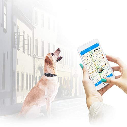 JIASHU Pet Tracker, Smart Dog Collar avec Fonction vocale, GPS Tracker, 2-Way Audio, Water Resistant,Anti- Lost Dog Tracker Dog GPS Collar, Real Time Alerts,White
