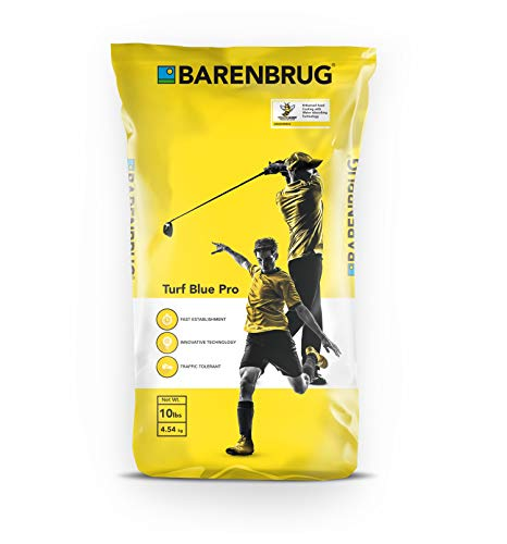 Barenbrug Turf Blue Pro Kentucky Bluegrass Grass Seed with Yellow Jacket Seed Coating - Drought...