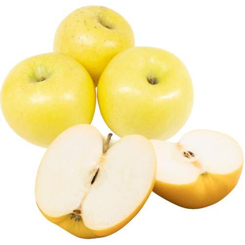 訳あり 減農薬 長野 シナノゴールド りんご 約4.5kg 8〜25個入 C品 産地直送