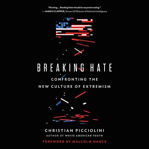Breaking Hate  By  cover art