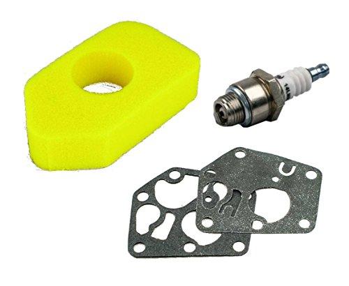 gardexx Vergaser Membrane +Luftfilter +Zündkerze für Briggs&Stratton Quattro