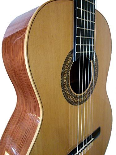 MARCE CHARRITA - Guitarra Clasica española de estudio +Funda (caja armónica de pino, cuerpo de madera de Etimoe. Un perfíl en marquetería. Accion baja. Tamaño adulto)