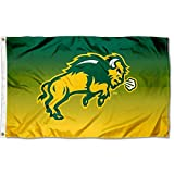 College Flags & Banners Co. North Dakota State Bison Two Tone Gradient Flag