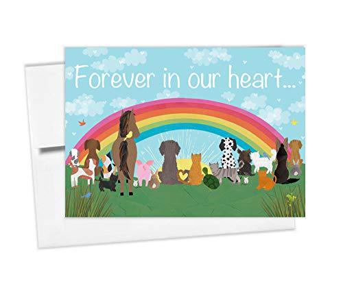 Tiny Expressions Rainbow Bridge Pet Sympathy Memorial Card with Envelope 5'x7' (Rainbow Bridge Card)