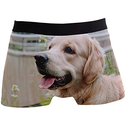 Hombres Calzoncillos Boxer Perro Animal Lindo Cachorro Ropa Interior para niño Juventud Hombres poliéster Spandex Transpirable