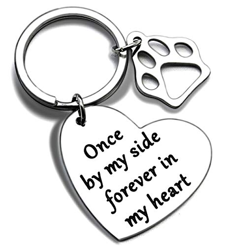 iweca Pet Memorial Gift Keychain for Dogs Cats Personalized -Loss of Pet Sympathy DIY Crafts Keepsake Cat Remembrance Angel with Paw Print FamilyKeyrings