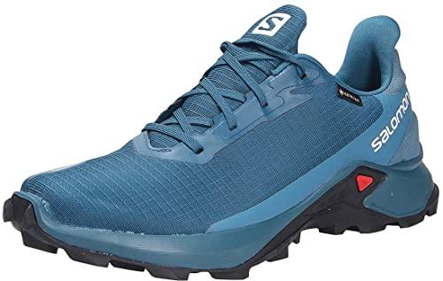Salomon Alphacross 3 Gore-Tex (impermeable) Hombre Zapatos de trail running, Azul (Legion Blue/Mallard Blue/Night Sky), 42 2/3 EU