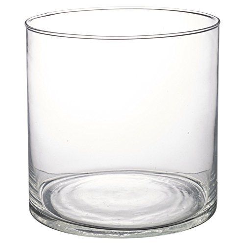 Glass Vase Table Centrepiece Decorative Flower Display Bowl Fruit - Cylinder H20xD20cm