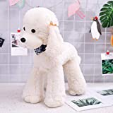 Ruzucoda Plush Poodle Dog Puppy Stuffed Animals Toys Dolls Kids Gifts White 12 Inches