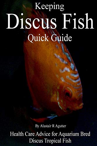 Keeping Discus Fish Quick Guide: Health Care Advice for Aquarium Bred Discus Tropical Fish