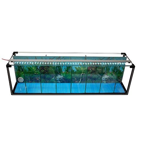 Komplettset Aquarium Zucht-Becken Betta 38 L, Garnelen-, Aufzucht-, Kampffisch-Aquarium inkl. LED-Lampe,Luftpumpe