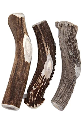 Deer Valley Chews Premium Deer Antler for Dogs - Large 6-7 Inches Long, 3 Pack - All Natural Dental Treat for Teething and Chewing - Premium Grade, Naturally Shed