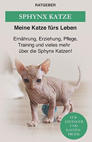 Sphynx Katze: Ernährung, Erziehung, Pflege, Training und vieles mehr über die Sphynx Katzen!