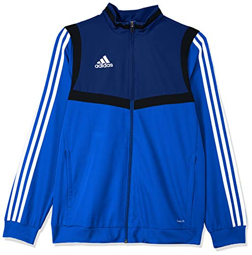 adidas Kinder TIRO19 PRE JKTY Jacket, Bold Blue/Dark Blue/White, 15-16