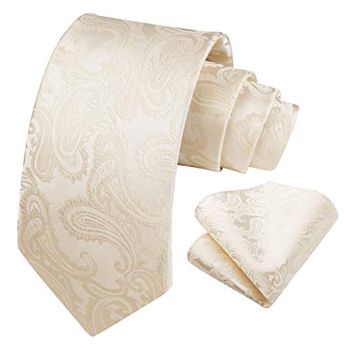 HISDERN Panuelo de corbata beige paisley para hombre Conjunto de corbata de fiesta de boda y panuelo de bolsillo