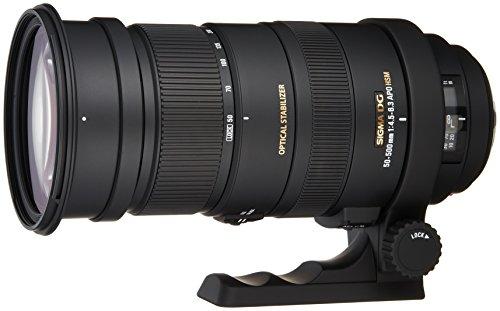 Sigma 50-500 mm F4,5-6,3 DG OS HSM-Objektiv (95 mm Filtergewinde) für Sony Objektivbajonett