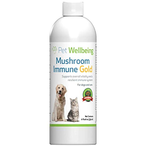 Pet Wellbeing - Mushroom Immune Gold - Natural Alternative Support for Dogs and Cats with Cancer - 8oz (237ml)