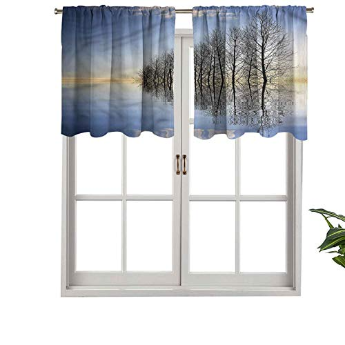 Hiiiman Cortina de bolsillo con aislamiento térmico para decoración del hogar, cenefa congelado lago en la naturaleza, juego de 1, 91,4 x 45,7 cm para ventana de sótano