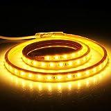Casa CA 220V, 144 LED SMD 5730 Cubierta IP65 Tira de luz LED Impermeable con Enchufe, 72 LED/m, Longitud: 2 m Hermoso (Talla :...
