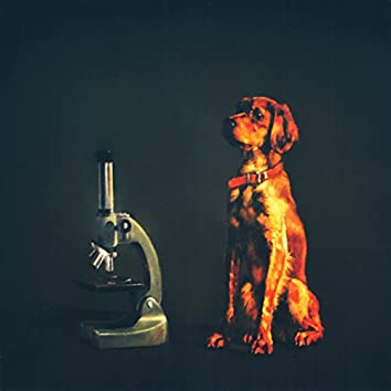 Les Revelacions Microscòpiques
