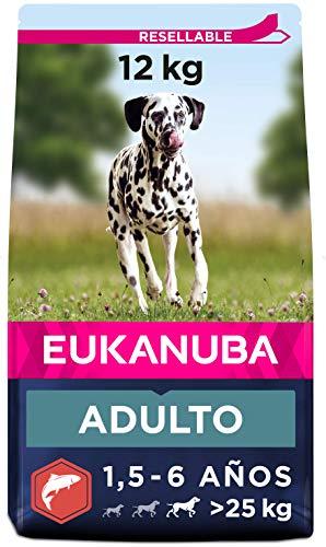 Eukanuba Alimento seco para perros adultos de razas grandes, rico en salmón y cebada, 12 kg ✅