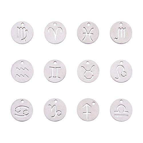 PandaHall Elite 24pcs 304 Stainless Steel 12 Constellations Zodiac Sign Pendants Charms Astrology Horoscope Charms Beads for DIY Jewelry Craft Making(Stainless Steel Color)