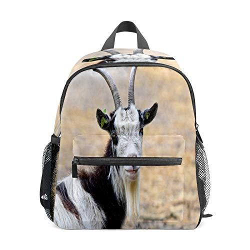 Mochila infantil para niños de 1 a 6 años de edad, mochila perfecta para niños de cabra, animales, granja, ovejas
