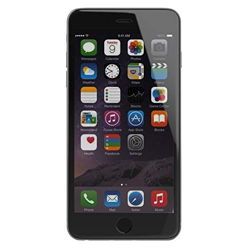 Apple iPhone 6 16GB Factory Unlocked - Space Gray - ATT Tmobile Metro Cricket