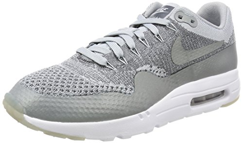 Nike Air Max 1 Ultra Flyknit Mens Running Trainers 843384 Sneakers Shoes (US 6.5, Wolf Grey White 001)