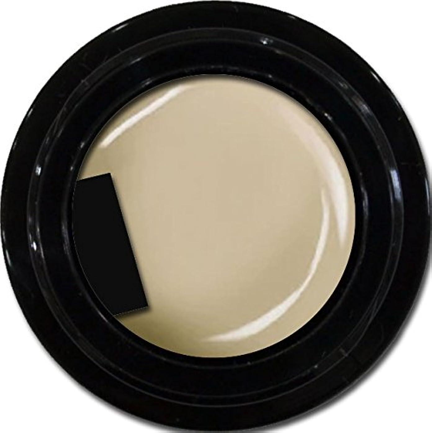 ナットアジア人に話すカラージェル enchant color gel M804 AshGray 3g/ マットカラージェル M804 アッシュグレー 3グラム