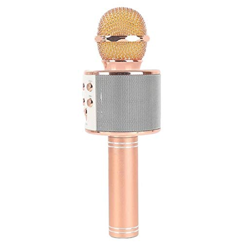 JJZXD Micrófono inalámbrico USB Condensador Profesional micrófono de Karaoke Soporte Bluetooth Radio mikrofon Estudio de grabación (Color : B)