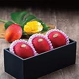 マンゴー みやざき完熟マンゴー 風のいたずら 訳あり 2Lサイズ×3玉 宮崎県産