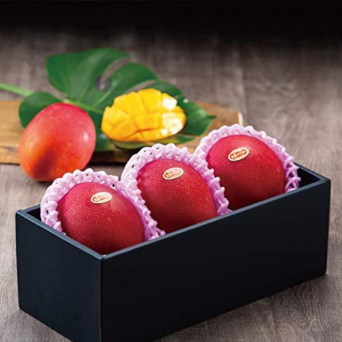 マンゴー みやざき完熟マンゴー 青秀 4Lサイズ 510g以上×3玉 宮崎県産 JA宮崎経済連