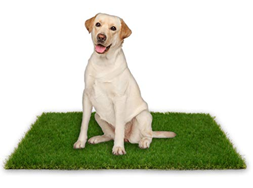Oiyeefo Artificial Pet Pee Grass Mat for Puppy, Pet Turf Fake Grass Replacement Pad for Dog Potty Training, Indoor and Outdoor - 2 Packs (18' x 28')
