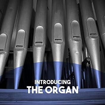 Introducing: The Organ