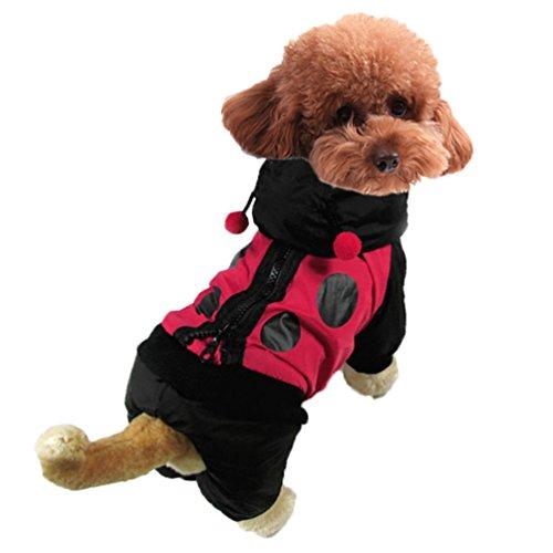 Yuncai Divertente Coccinella Travestimento Costumi per Animale Domestico Cosplay Halloween Festa Cane Cappotto Nero S