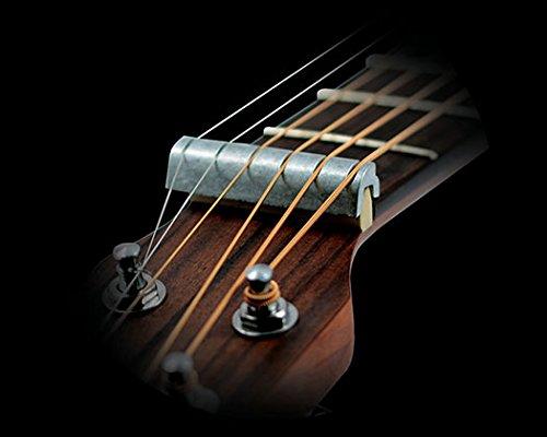 Grover GP1103 Perfect Guitar Nut: Amazon.es: Instrumentos musicales