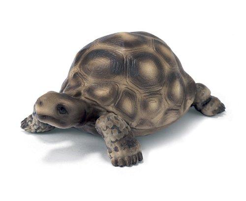 SCHLEICH 14304 - Riesenschildkröte