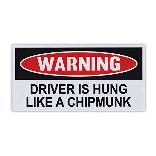 Crazy Novelty Guy Magnet, Funny Warning Magnet, Driver is Hung Like A Chipmunk, Practical Jokes, Gags, Pranks, 6' x 3'