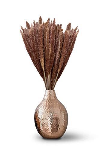L\'un • getrocknetes Pampasgras • 70 bis 75cm • Natur Braun • 15 Stück • hochwertig, ökologisch & nachhaltig • schöne Deko im Boho-Style • tolles naturbelassenes Interieur Design